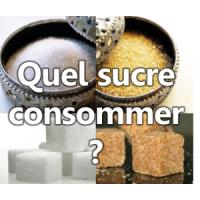 Le sucre, une douceur piège
